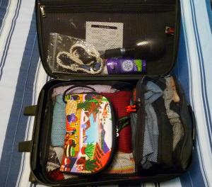 My colorful cosmetic bag...and everything else.